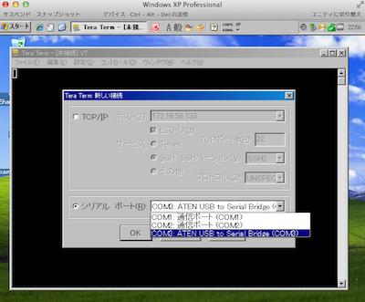 TeraTerm USB serial bridge screen